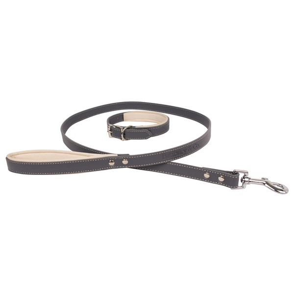 Luxury Dog Collar and Lead Set